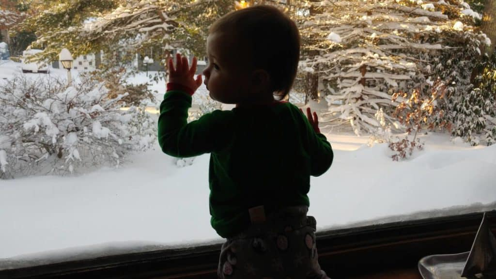 Little girl looks at snowy woods through window.