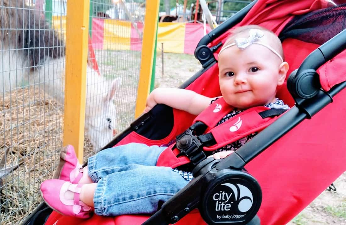 Baby girl looks at animals through fence from jogging stroller.