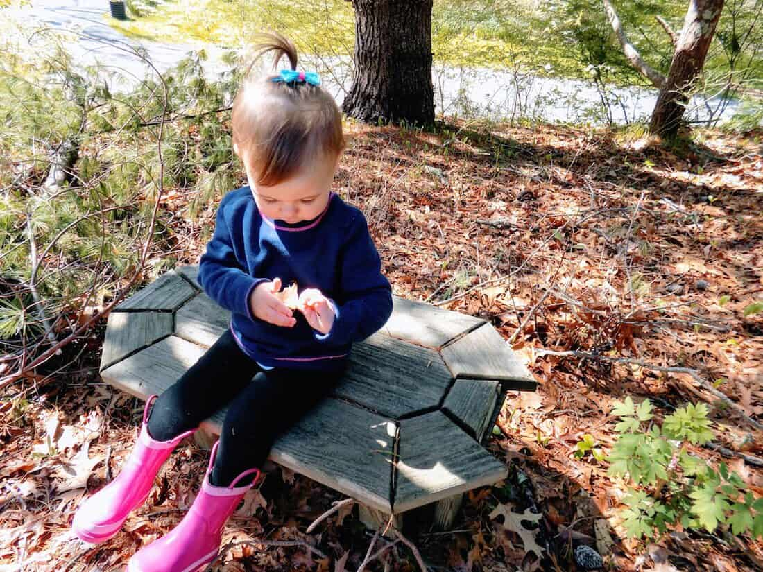 Toddler girl plays with leaves in woods.