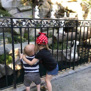 Children look through fence at Disneyland.