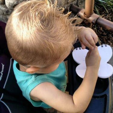 Child in stroller at Disney.
