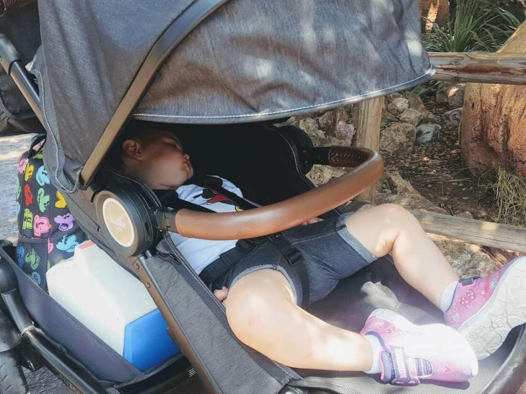 Sleeping toddler in stroller at Disney park.