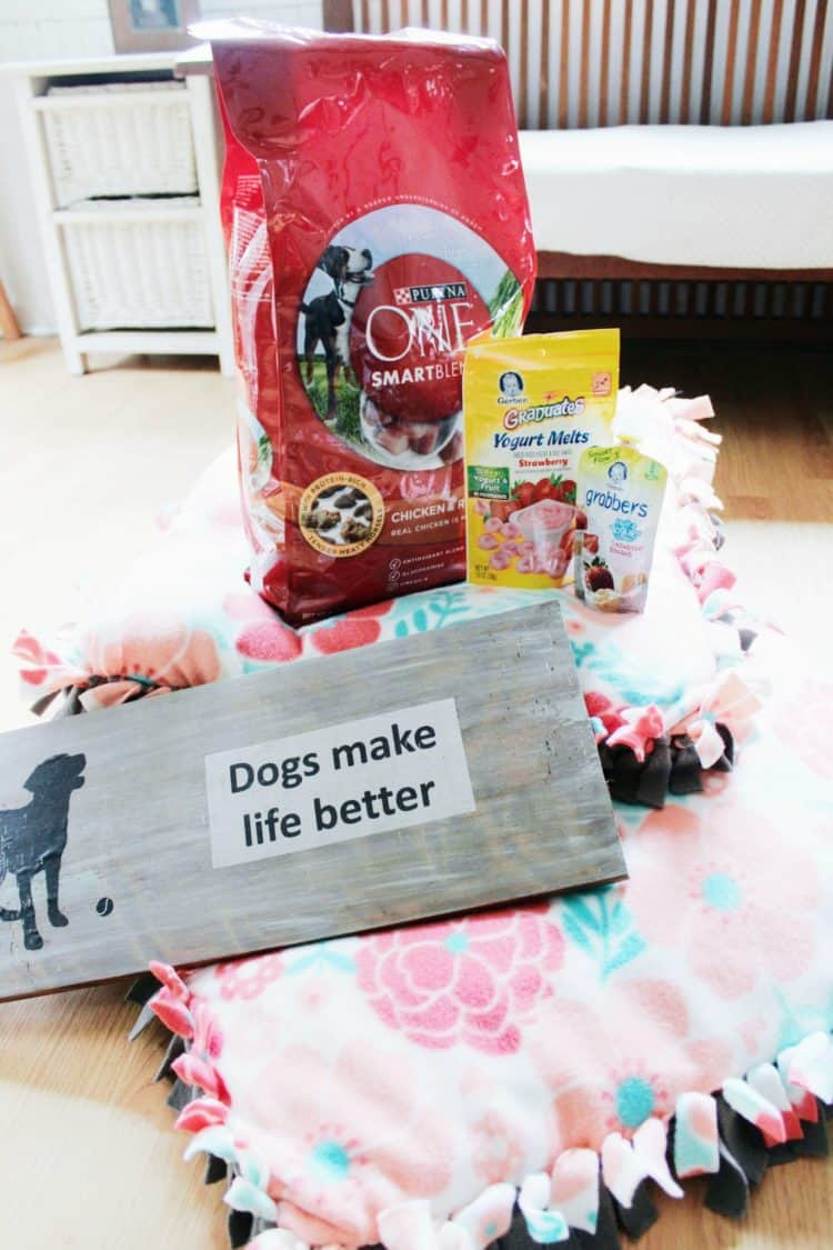 Perfect DIY Project for Dog & Baby BFFs + a Contest Announcement ...