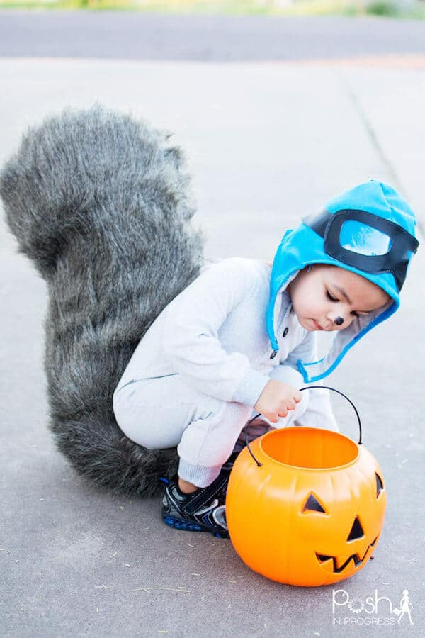 Small child wears squirrel costume with plastic pumpkin.