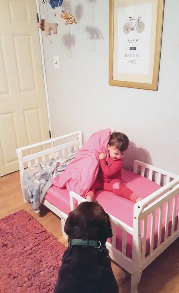 Toddler girl lifts pillow off toddler bed.