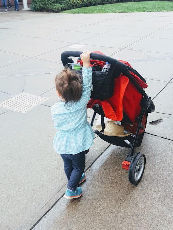 Toddler girl pushes red stroller.