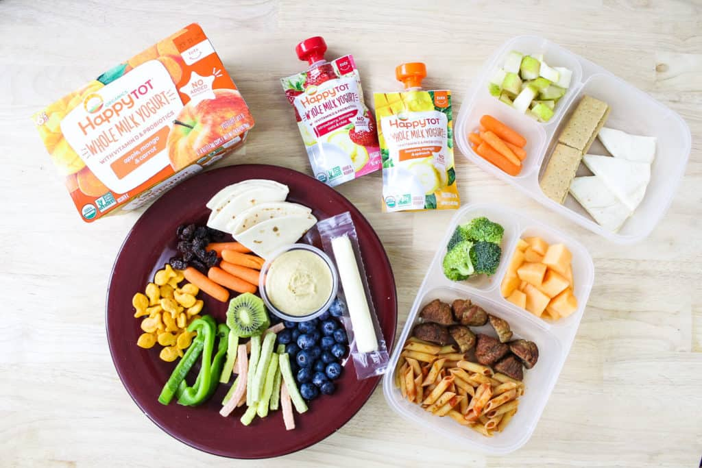 Several examples of great toddler lunch ideas, both for home on a plate and for daycare in a lunch container.