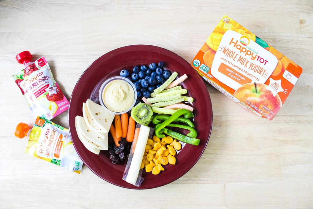 A plate with lots of different toddler friendly daycare lunch foods