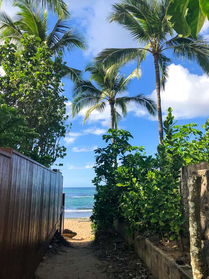 Entrance to beach in North Shore Oahu.