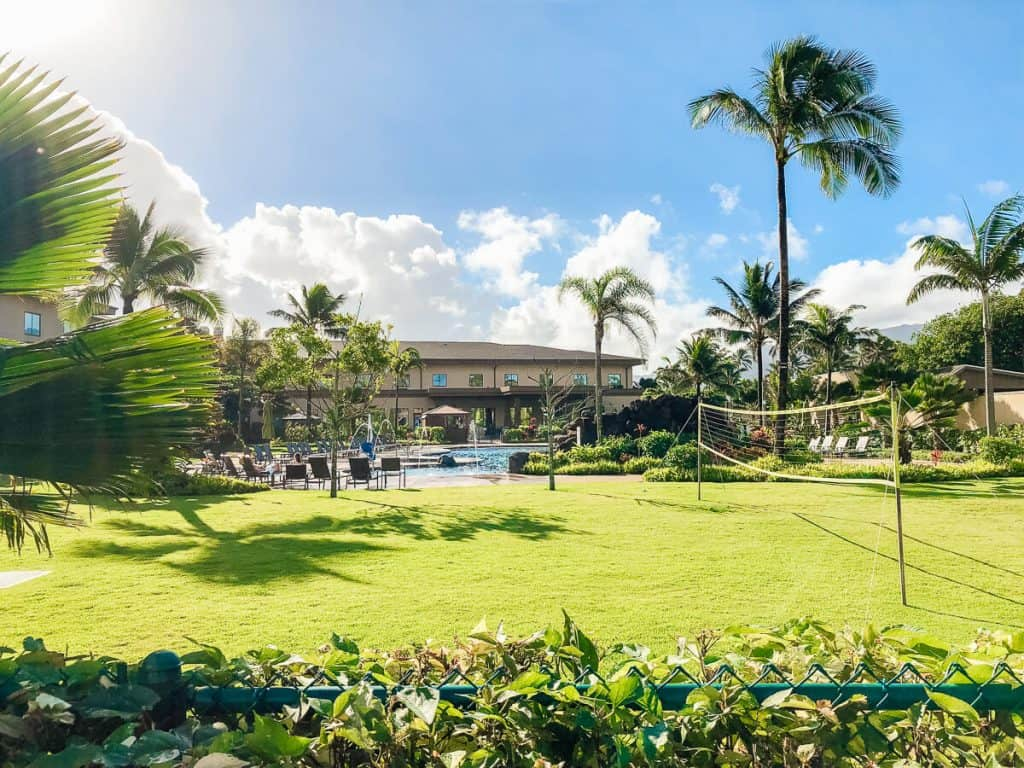 Top Things to Do: North Shore Oahu in 24 Hours + Courtyard