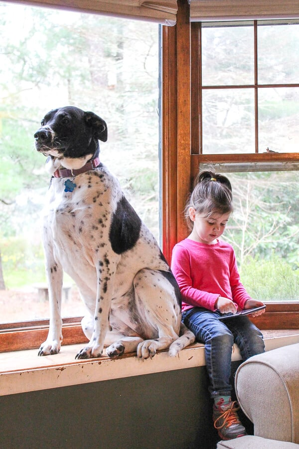 Girl plays on tablet next to family dog.