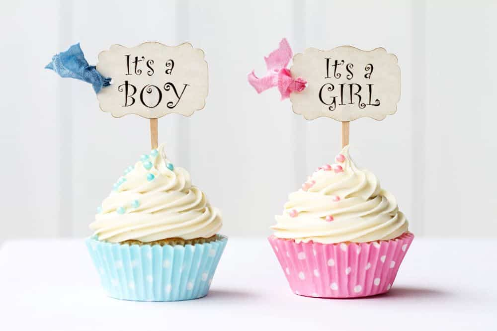 Blue and pink gender cupcakes with Its a Boy and Its a girl decorations