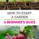 Pinnable image of how to start a garden.