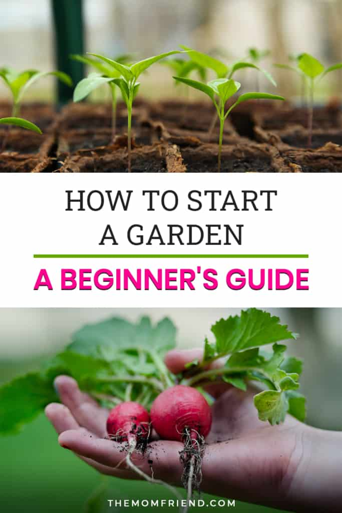 how to start a garden a beginner's guide in text with photos of radish and small plantings
