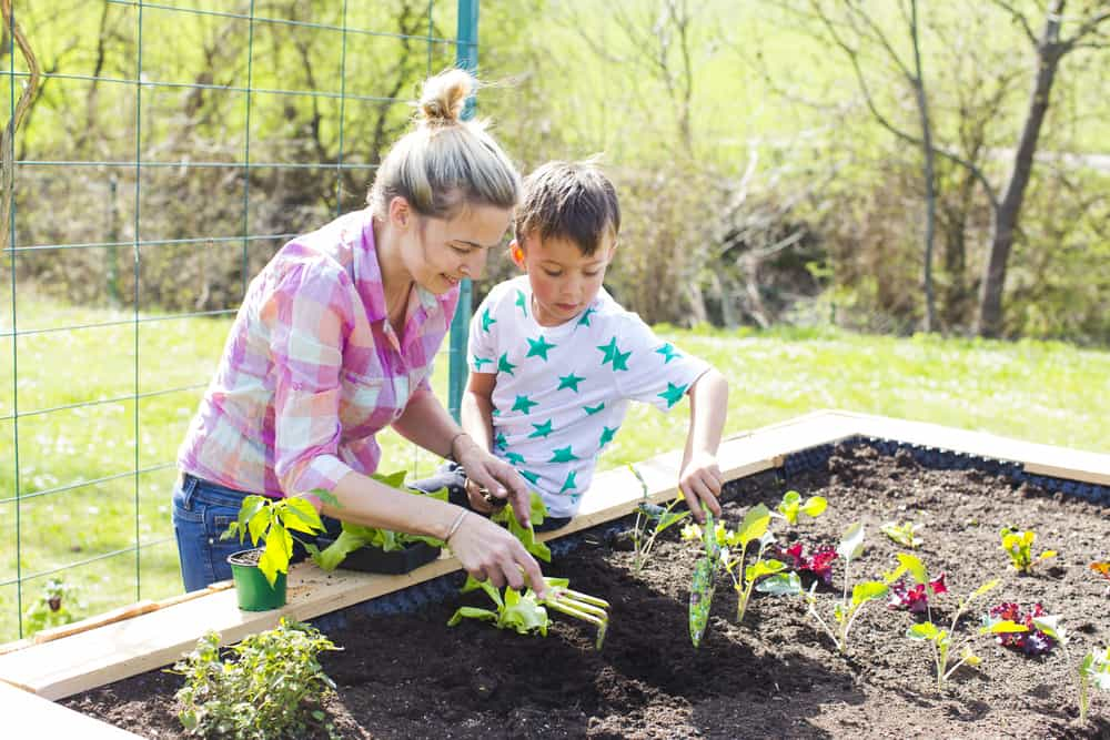 mom and son planting a garden in a raised garden bed