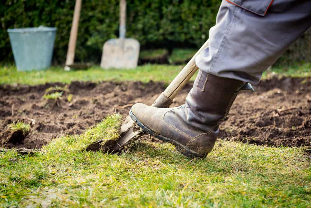 Man uses work boot to push shovel into ground.