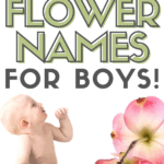 little boy looking up at the words flower names for boys with flower