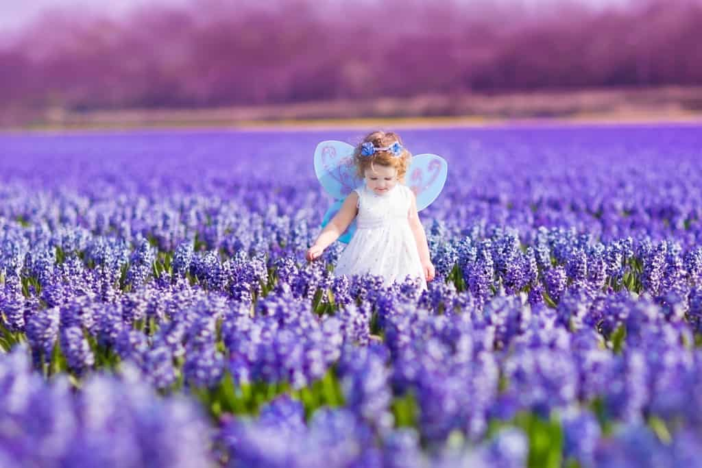 Girl represents Fairy-Inspired Baby Names, wearing fairy costume in lavender field.