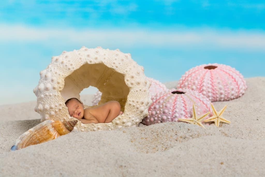 Newborn sleeps inside shell at beach.