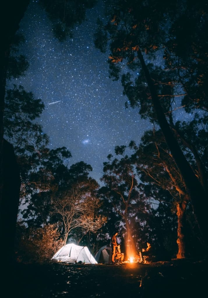 campfire and family camping under a beautiful starry sky