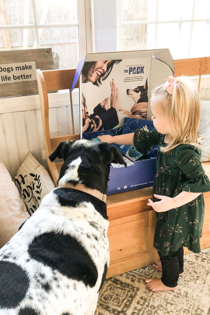 dog and girl with the pack amazon prime video box