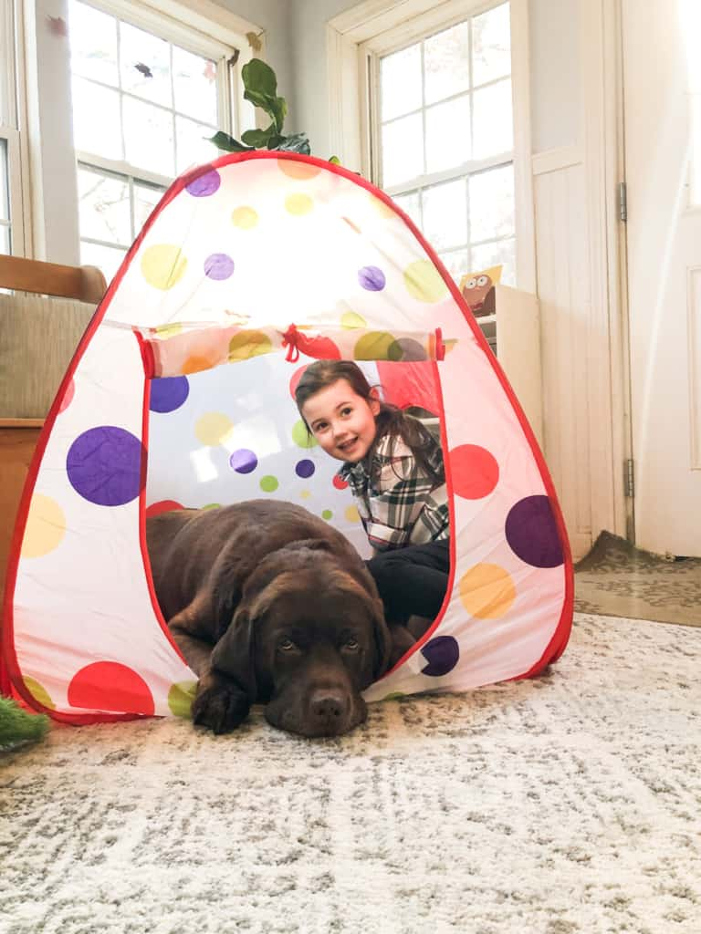 dog and kid in tent