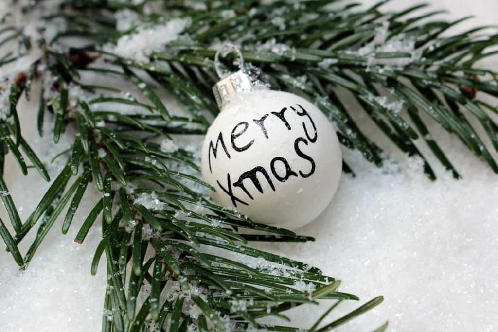 Merry xmas Christmas ornament on tree limb.