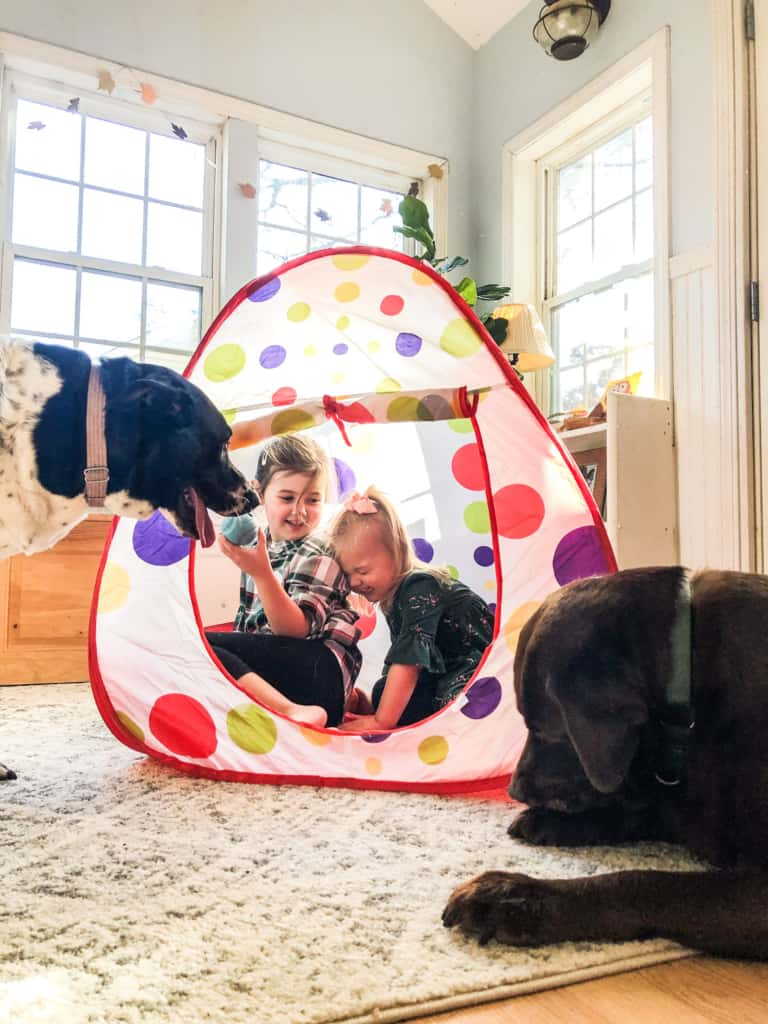kids playing in pop up tent with dogs outside of it