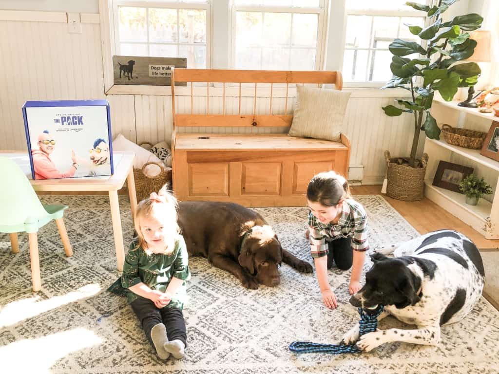 kids playing with dogs on rug with amazon the pack on prime marketing box