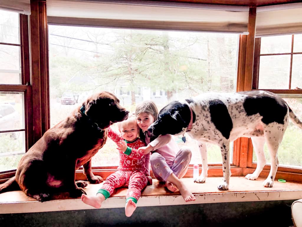 two dogs and two girls on bay window seat