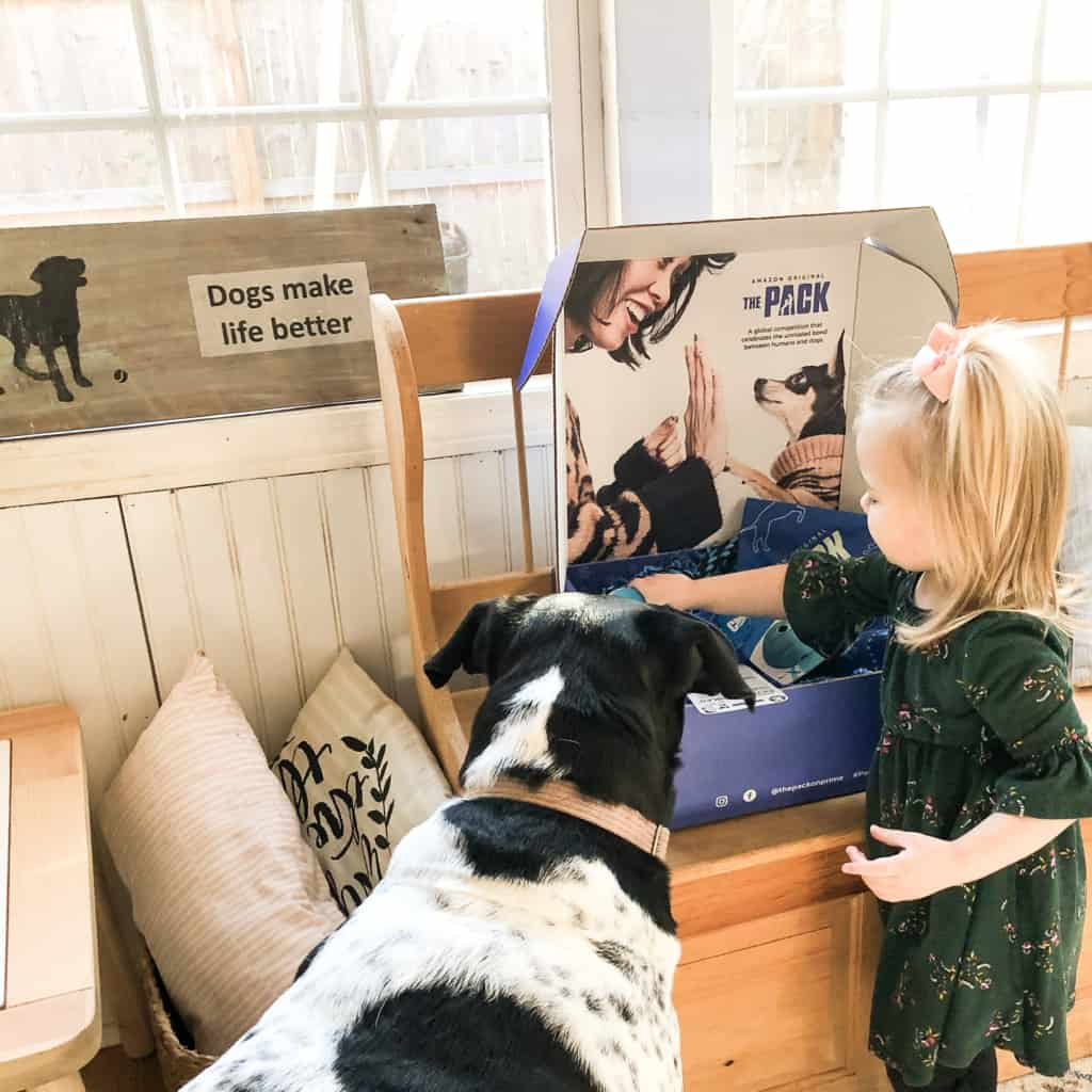 toddler with dog looking at an amazon the pack on prime marketing box