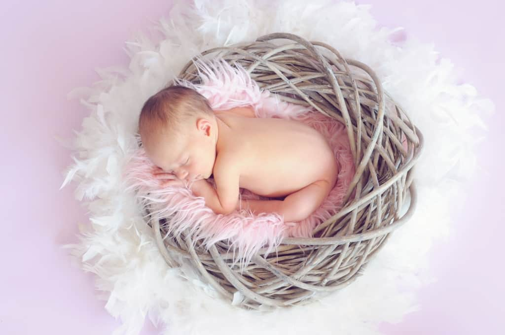 Newborn baby girl sleeps in basket nest with pink, furry blanket.