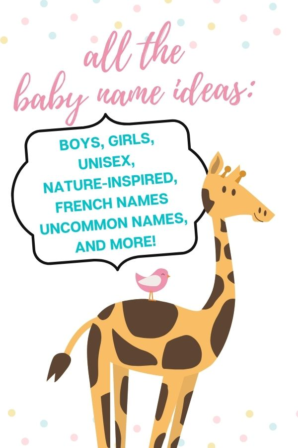 baby name ideas graphic